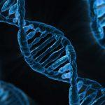 「自然」はどこまで「自然」? 遺伝子操作が変える環境保護のあり方