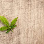 ヘンプとは何か? マリファナとは違う「麻」の有効活用で広がる産業